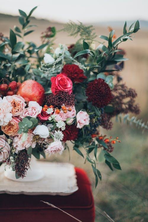 Fotos de stock gratuitas de apple, arreglo floral, bonito, brillante