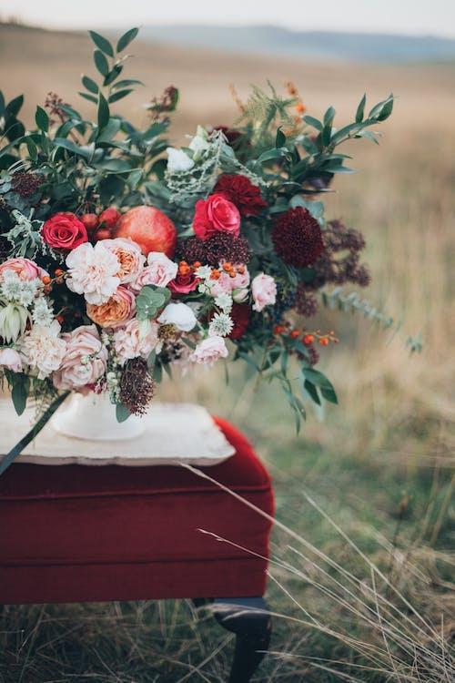 Gratis arkivbilde med blomster, blomsterbakgrunnsbilde, blomsterblad, bukett