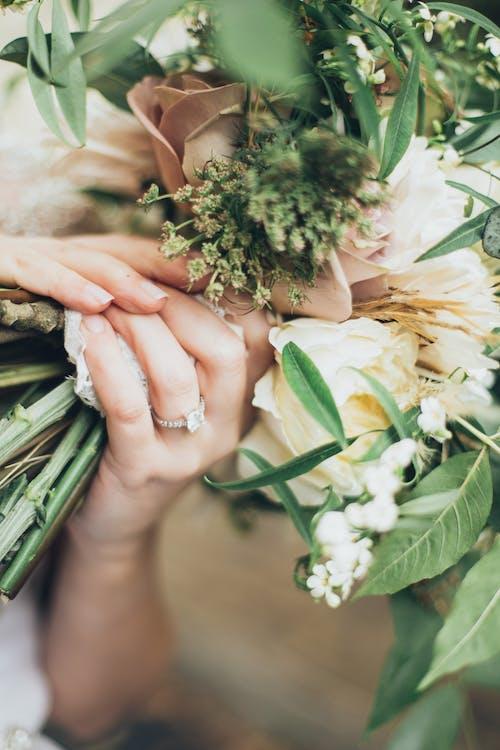 Gratis stockfoto met bloeien, bloemen, bloesem, boeket