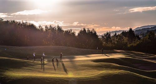 Fotos de stock gratuitas de golf, puesta de sol