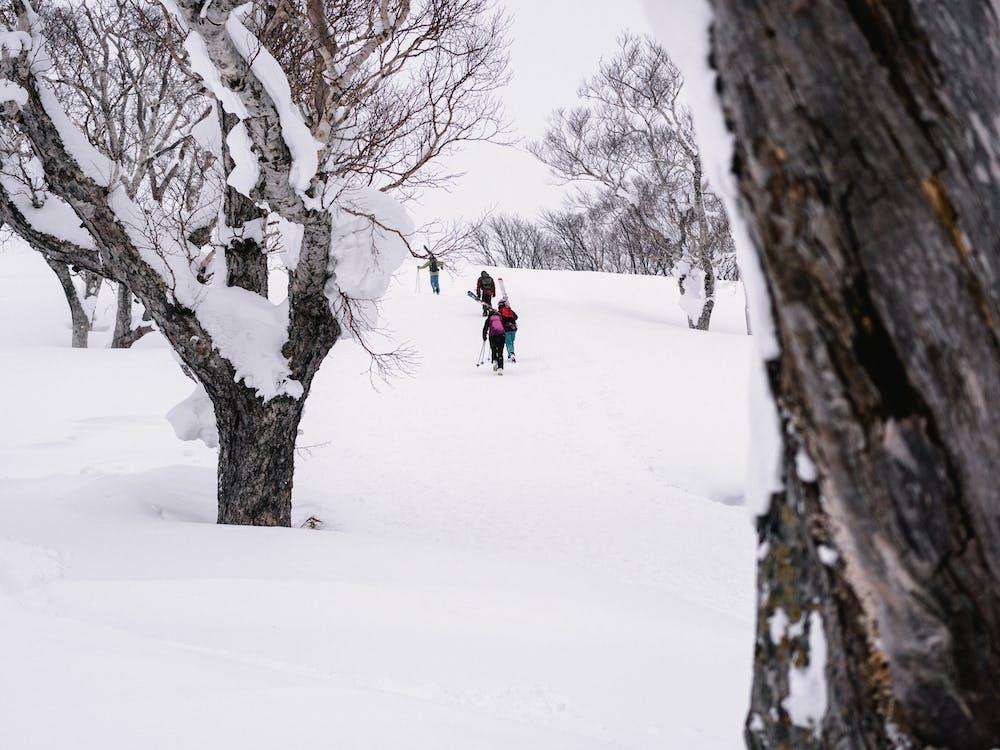 People Walking on Snow
