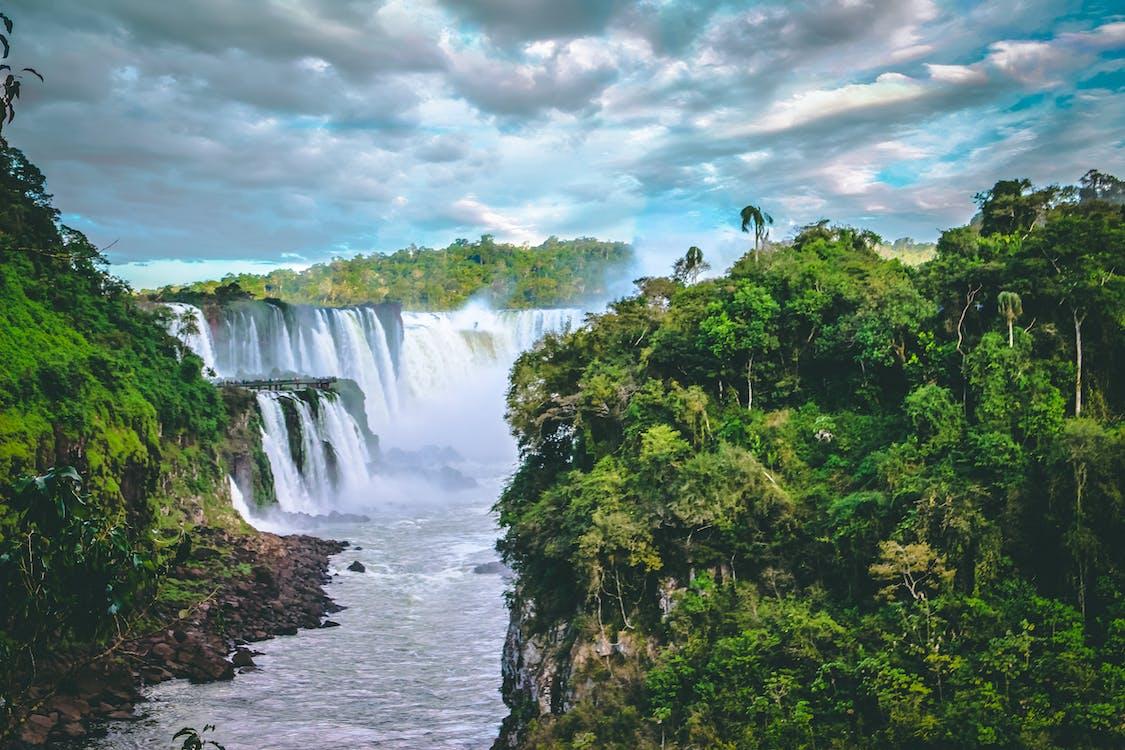 aigua, arbres, aventura