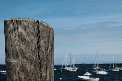 Free stock photo of boats, dock, maine