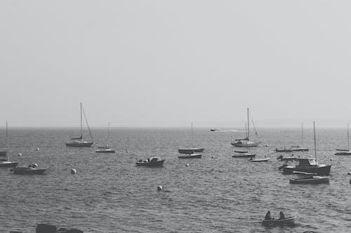 Free stock photo of boats, dark, harbor