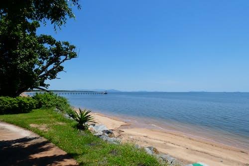 açık hava, ağaçlar, asfalt yaya yolu, Avustralya içeren Ücretsiz stok fotoğraf