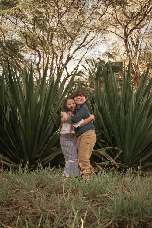 Fotobanka sbezplatnými fotkami na tému agáva, brat, byť spolu, chlapec