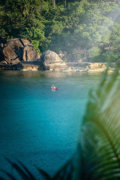 바다, 배, 열대의, 카약의 무료 스톡 사진