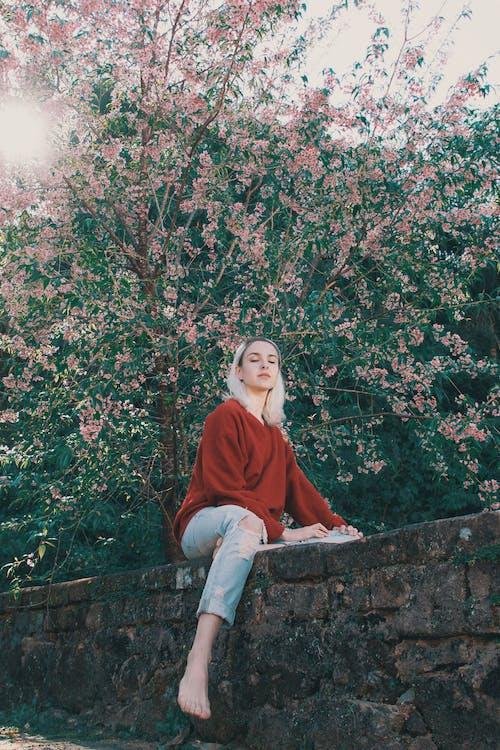 Fotos de stock gratuitas de adulto, árbol, atractivo, belleza