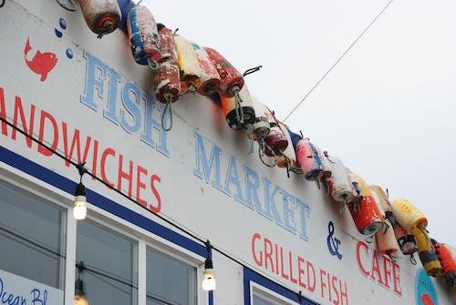 浮標, 船, 魚, 魚市 的 免费素材照片