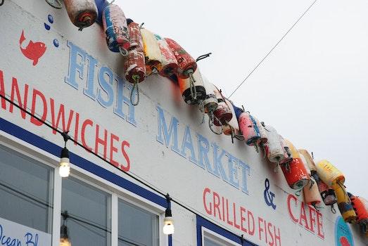 Kostenloses Stock Foto zu boot, fisch, fischmarkt, boje