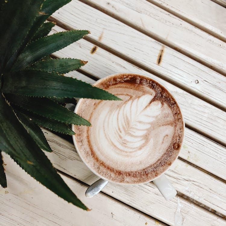 咖啡, 釀酒, 雨