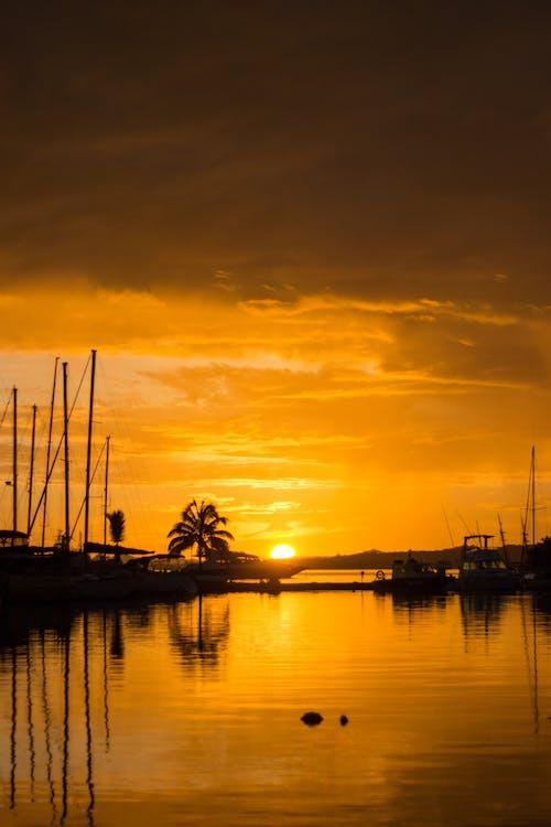 Free stock photo of beauty in nature, fiji, golden horizon, golden hour