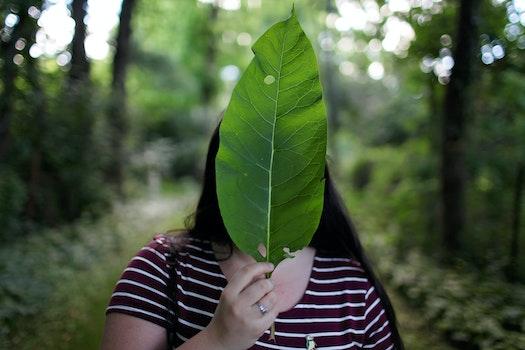 Kostenloses Stock Foto zu landschaft, natur, fashion, person
