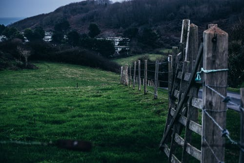 Free stock photo of cable wires, country, country life