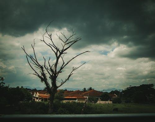 Fotobanka sbezplatnými fotkami na tému dážď, fádne, hracie pole, mraky