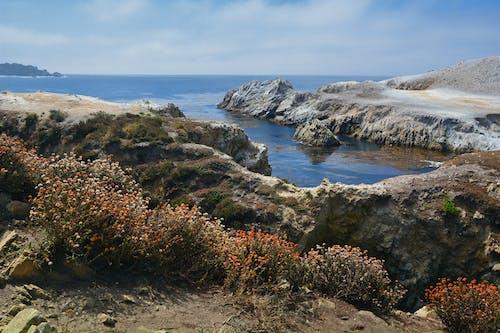 Free stock photo of big sur, Carmel, China Cove, cove