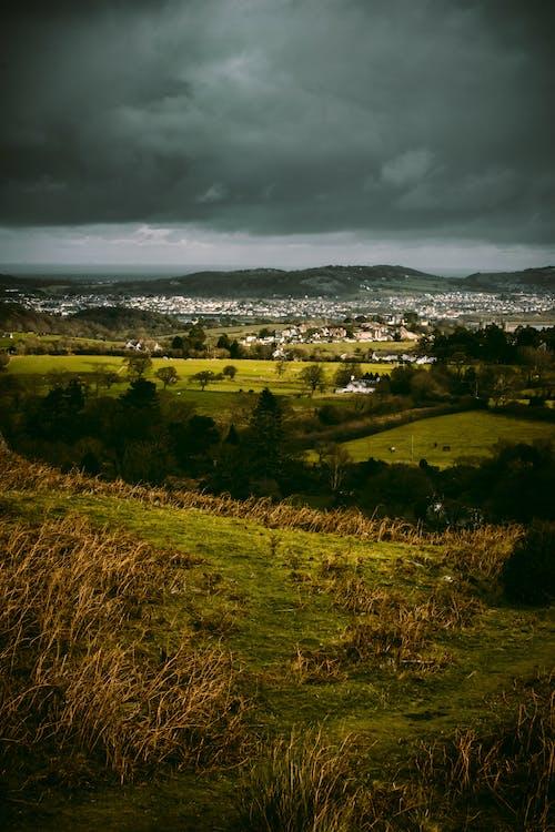 Základová fotografie zdarma na téma hřiště, orná půda, pole, tráva