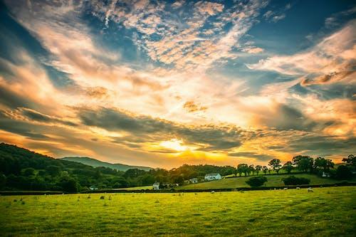 Grey Cloudy Sunset Sky over the Farm Field