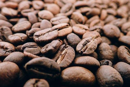 Δωρεάν στοκ φωτογραφιών με βάθος πεδίου, καφέ, καφεΐνη, καφές