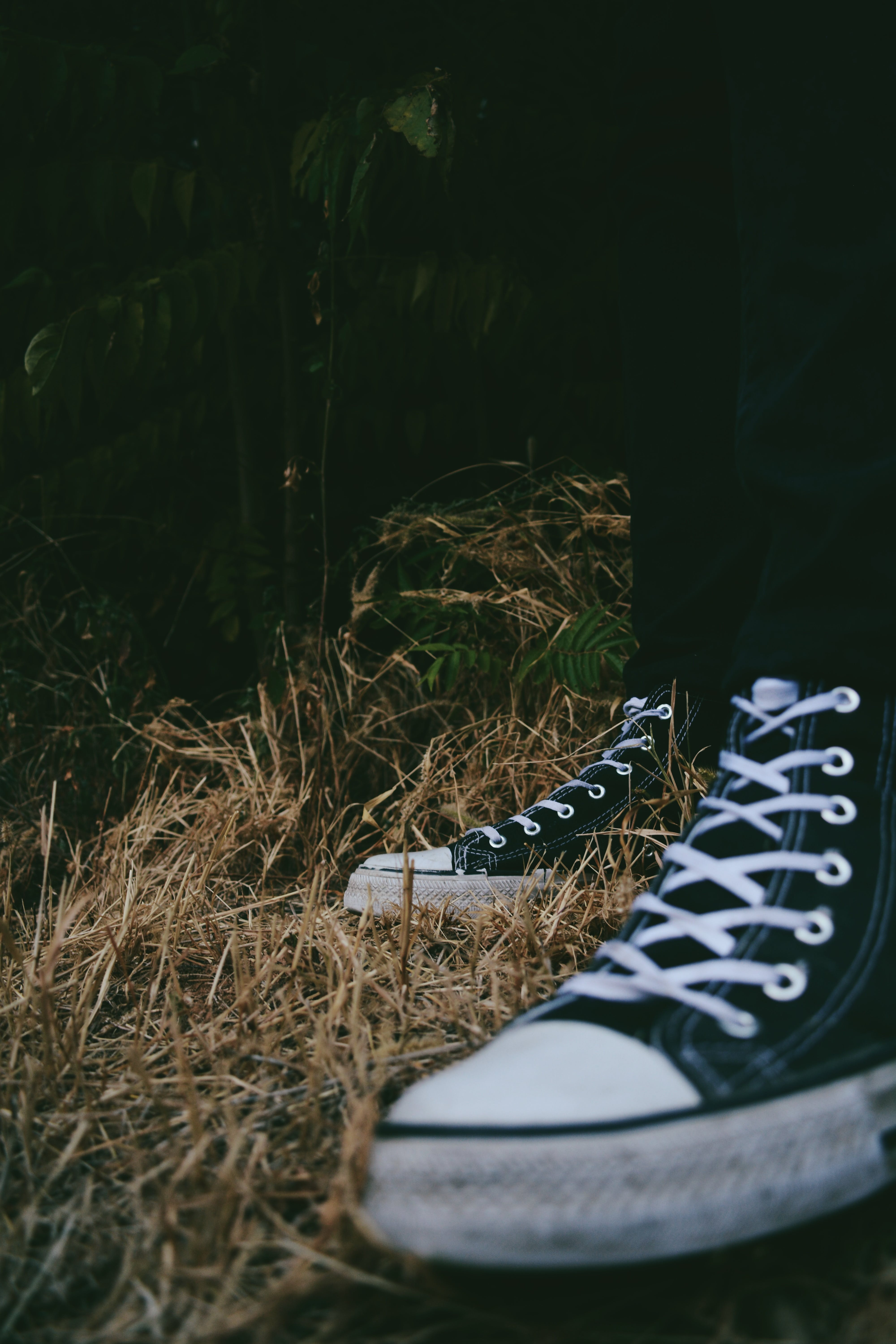 Free stock photo of legs, nature, style