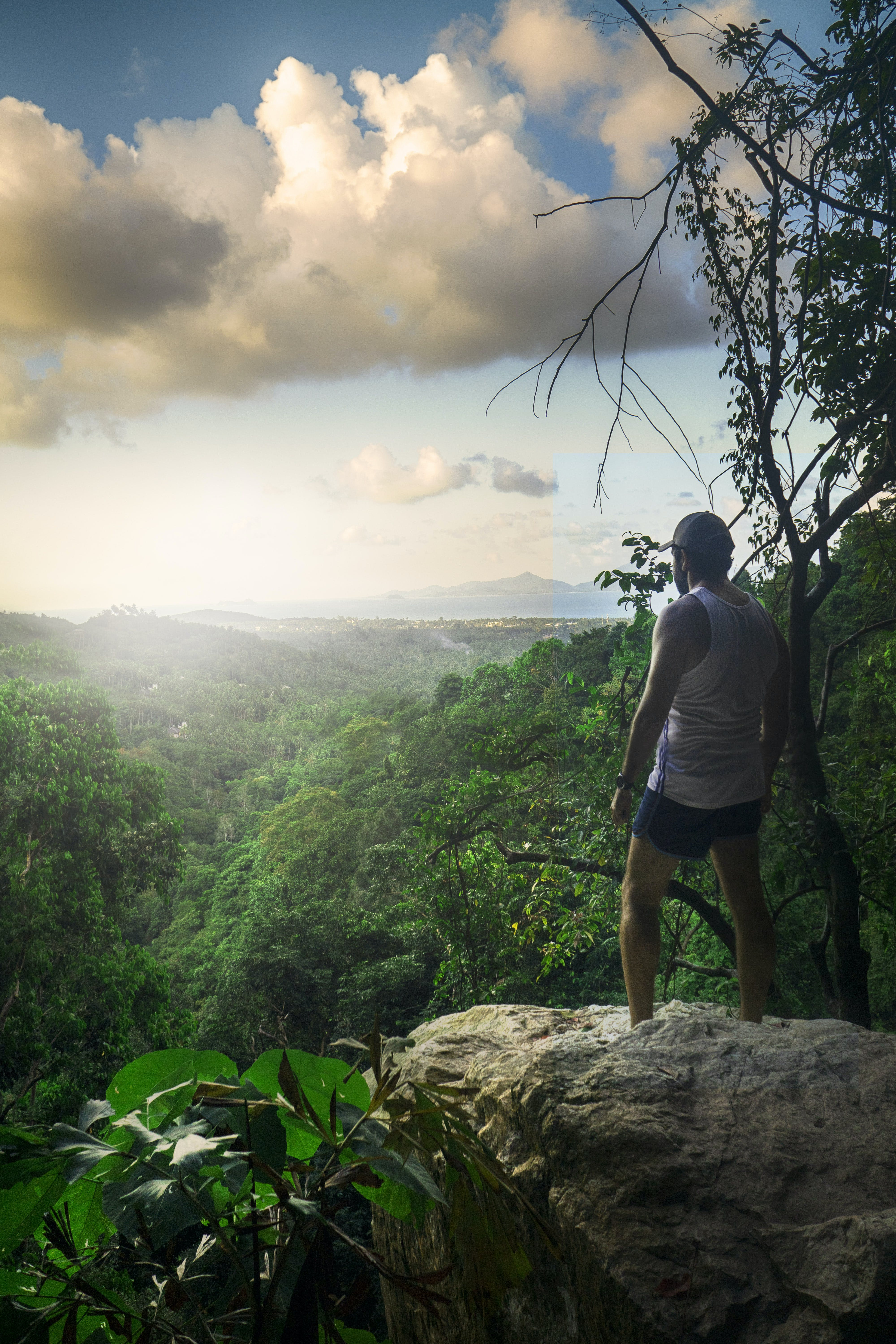 Man Standing On Cliff Surrounded By Trees