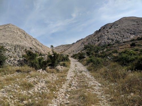 Free stock photo of croatia, dry, dry land