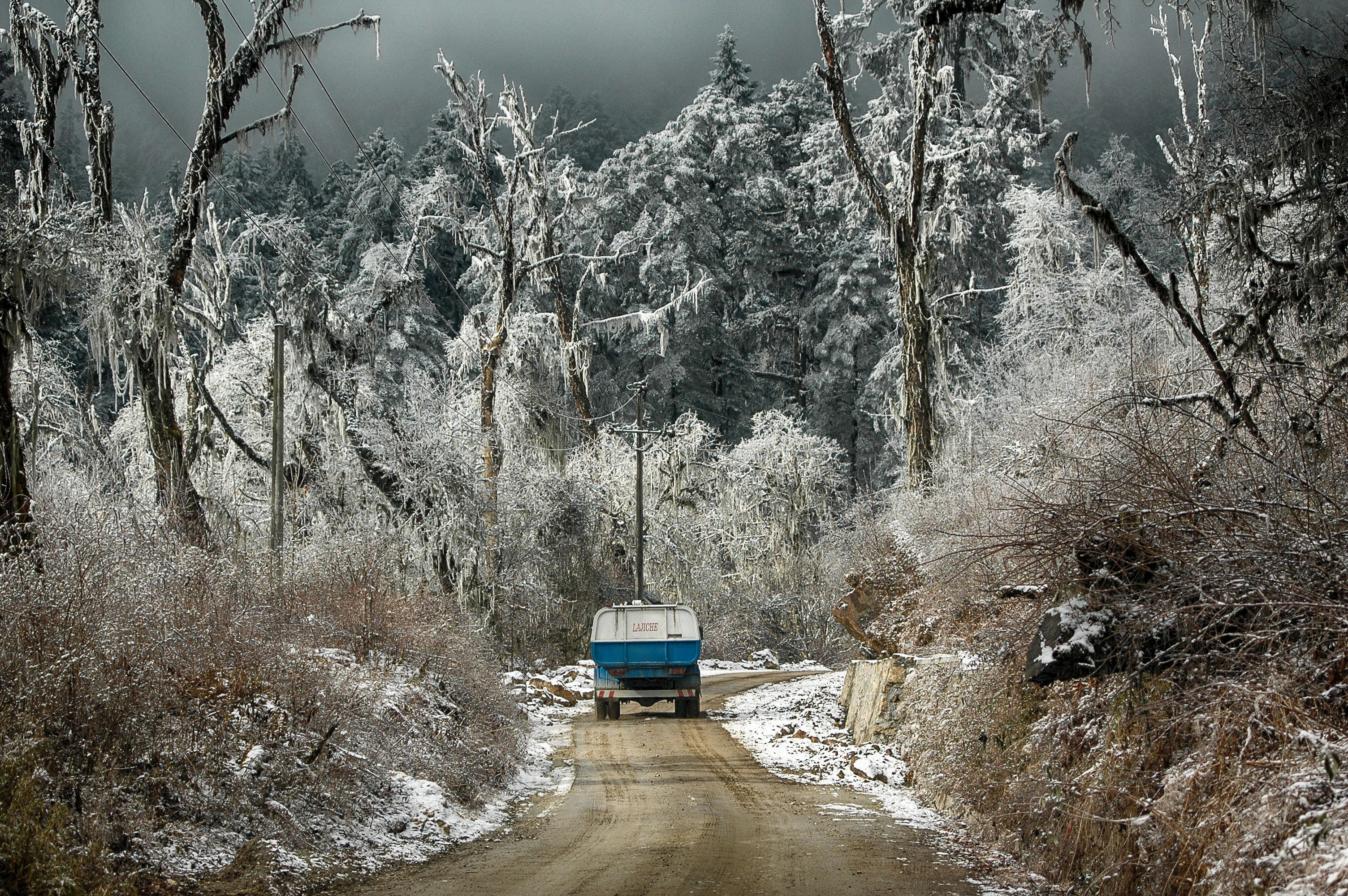 Free stock photo of pick up, pickup truck, road, snow