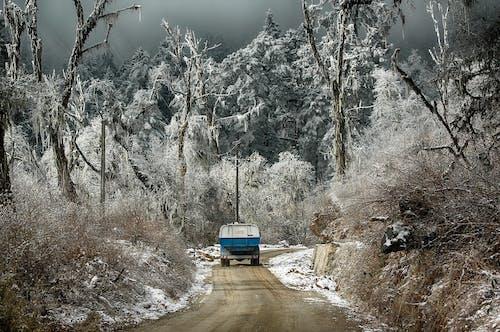Fotos de stock gratuitas de camioneta, carretera, nevar, recoger