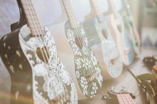 Ingyenes stockfotó művészeti kiállítás, rajz, ukulele témában