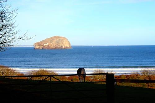 Gratis arkivbilde med blå, hest, himmel, natur
