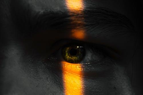 Linkes Menschliches Auge