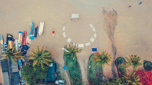 Δωρεάν στοκ φωτογραφιών με άμμος, ανάπτυξη, ανθίζω, βάρκες