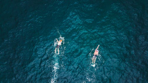 Aerial Photography of Two Person Swimming on Sea