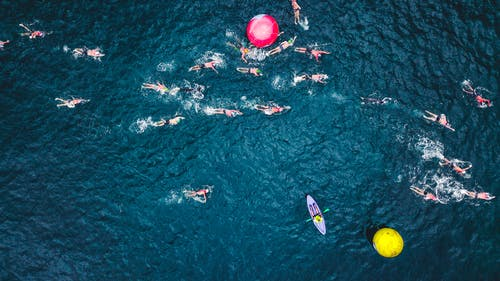 Aerial Photo of People Swimming on Sea