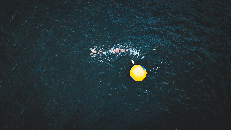 Kostenloses Stock Foto zu action, athleten, baden, bewegung