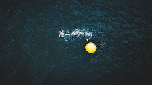 Gratis arkivbilde med atleter, bevegelse, bølger, dagslys
