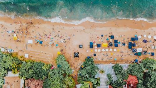 Ingyenes stockfotó drónfelvétel, fák, festői, idegenforgalom témában