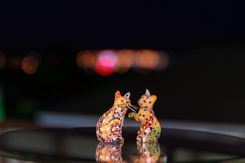 Gratis lagerfoto af farverig, glasbord, katte, kattefamilien