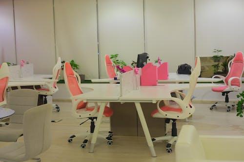 Základová fotografie zdarma na téma kancelář, kancelářská budova