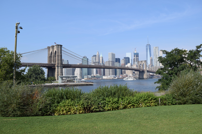 Free stock photo of brooklyn bridge, new york, park