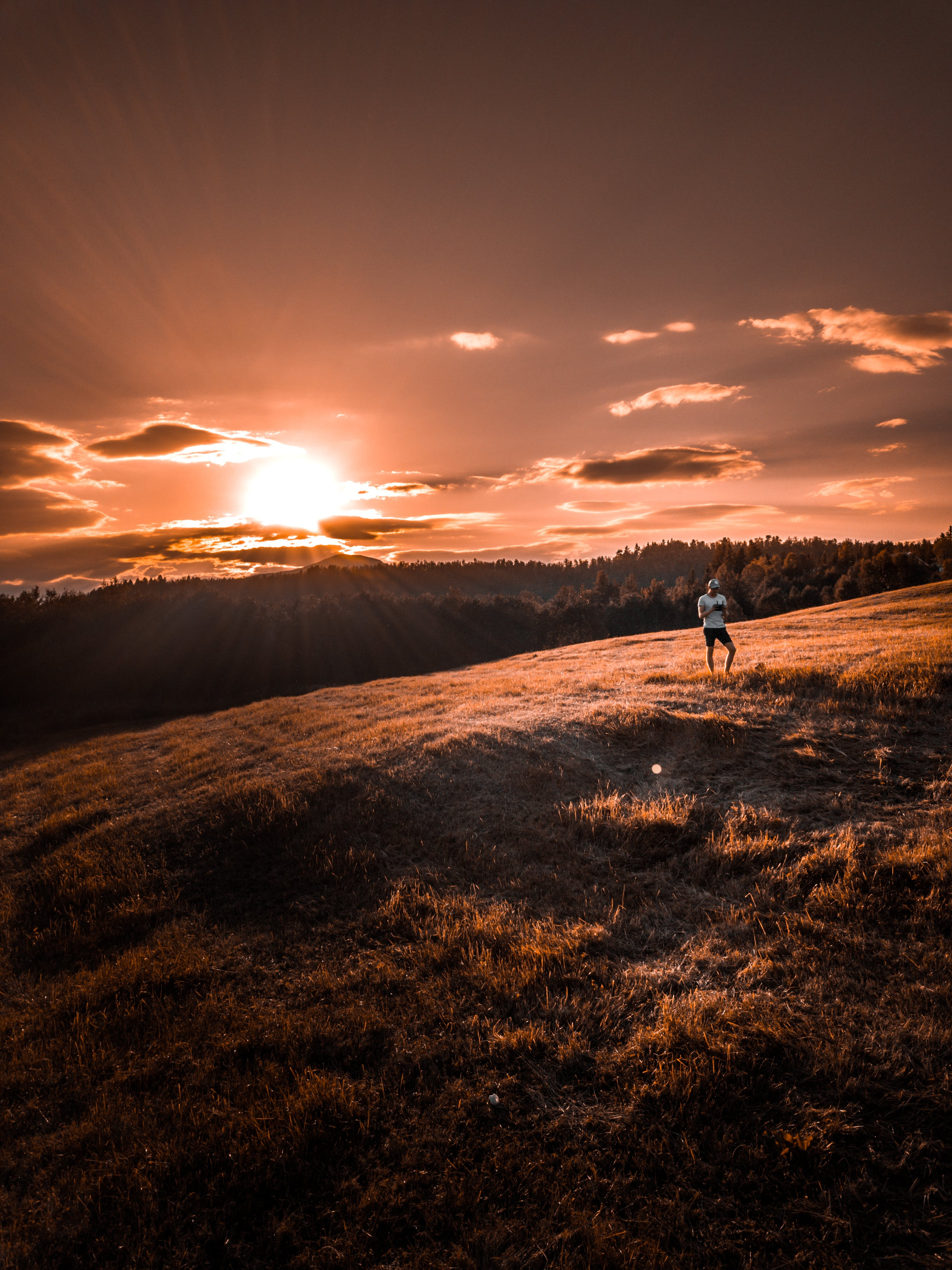 Person Standing on Brown Field during Sunrise