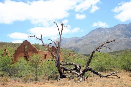 Free stock photo of broken, deserted, karoo