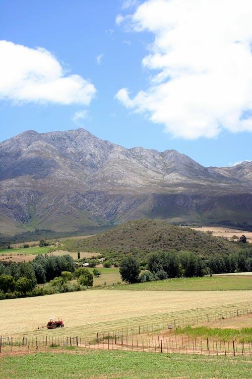 Free stock photo of farm, karoo, mountain