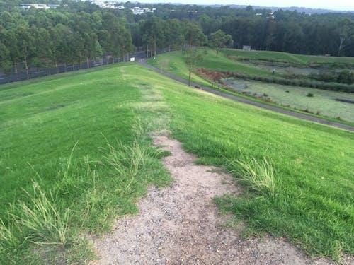 Free stock photo of australia, dirt, grass