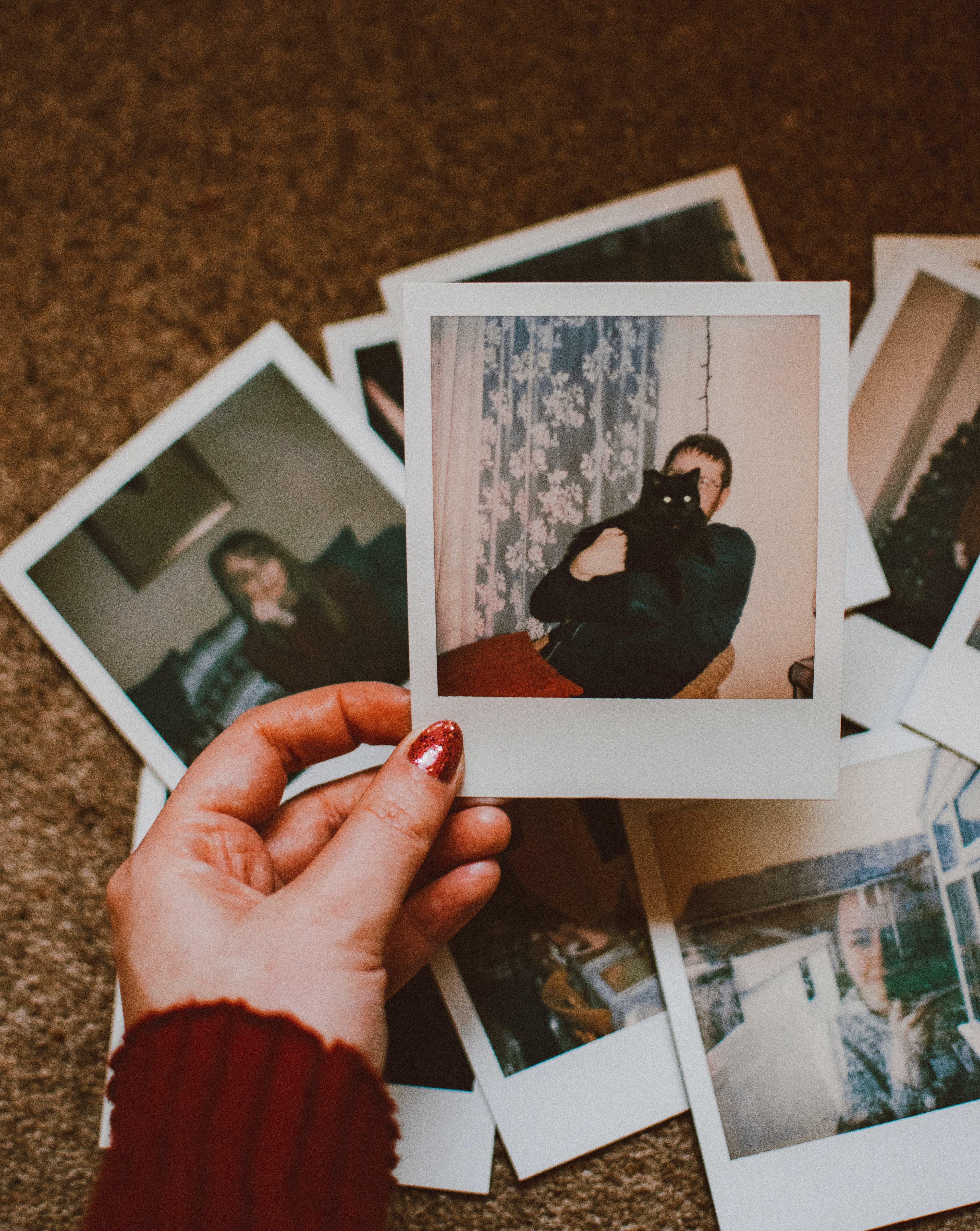 Foto profissional grátis de cenário, mão, pessoa, polaroid