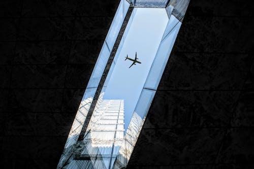 Foto stok gratis gedung tinggi, kota, langit biru, pesawat terbang