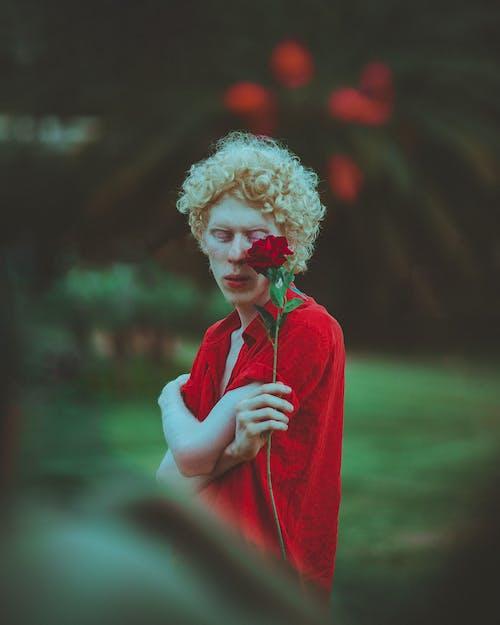 Foto d'estoc gratuïta de braços creuats, cabells arrissats, concentrar-se, delicat