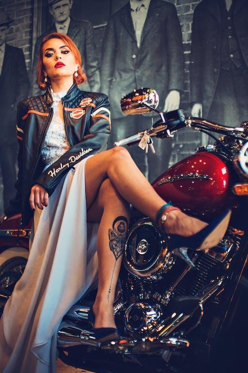 Foto d'estoc gratuïta de automoció, Harley Davidson, moda, moto