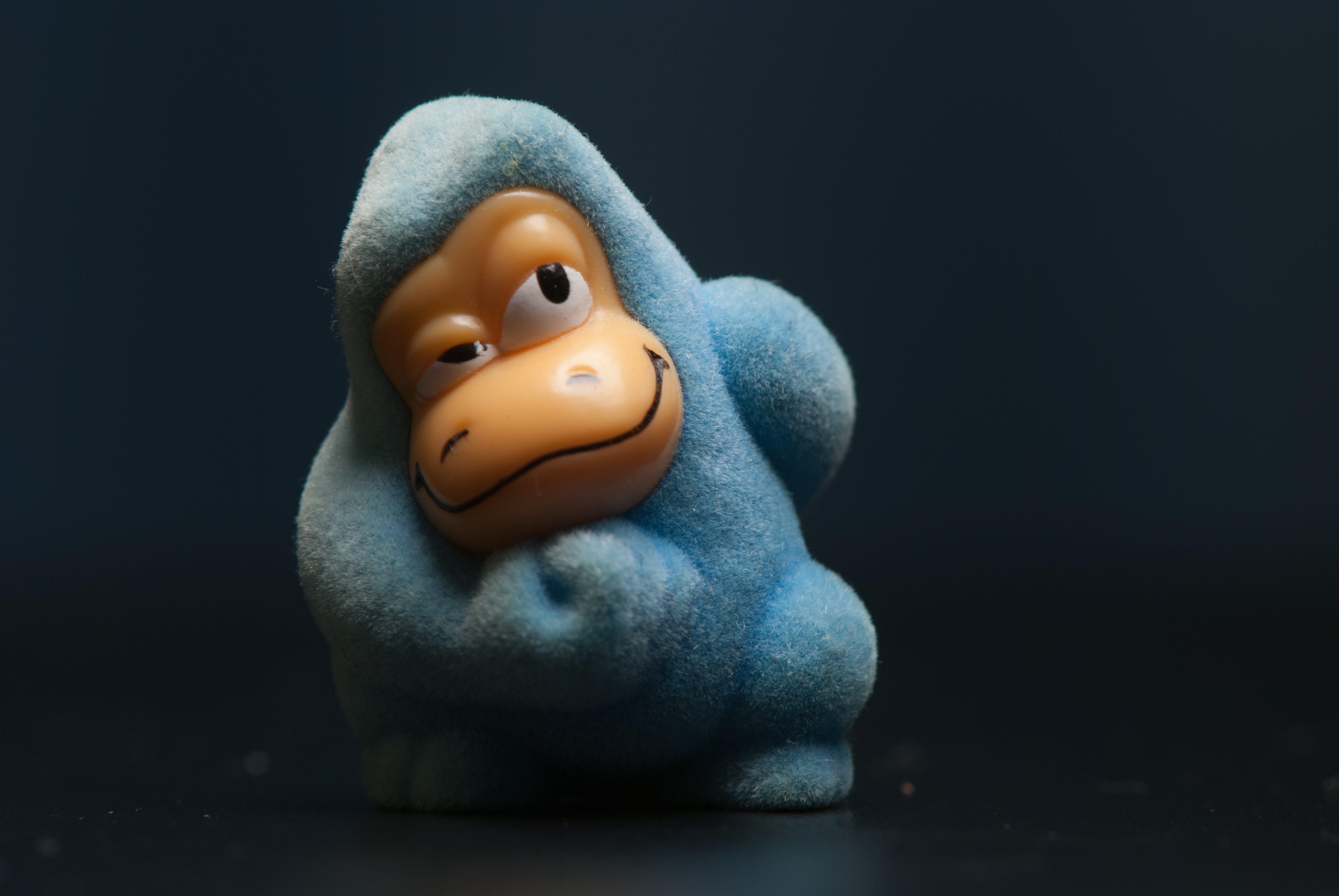 Základová fotografie zdarma na téma gorila