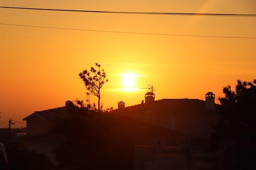 Photos gratuites de calme, coucher de soleil, dehors, nature